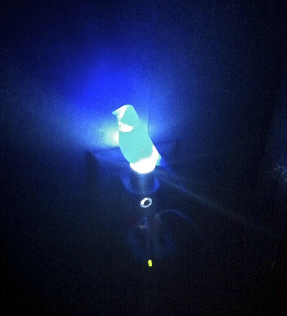 ... Blue Canary Night Light (Lite) | By Crimfants