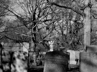 Forest Hills Cemetery View | by Mr. Ducke