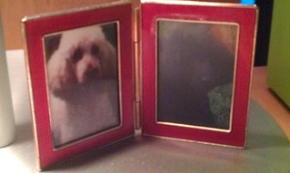 Poodle photo frame. | by tracy out west