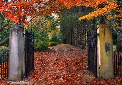 Gates Of Autumn | by rhyspope