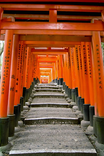 Steps through the Torii Gates at Fushimi Inari Taisha | by RM&O Kelly