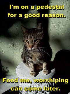 LeftyTheCat_OnThePedestal_FeedMeWorshipMe_768x1024 | by aztec3designs