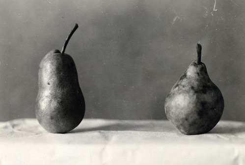 Pears | by OSU Special Collections & Archives : Commons