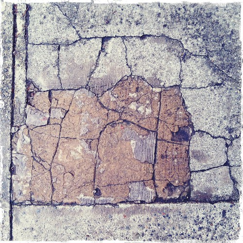 cracks in the cement sidewalk in seattle | by treiCdesigns