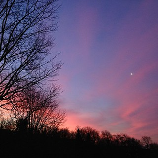 365.17 Pink sky & moon #nofilters | by remysharp