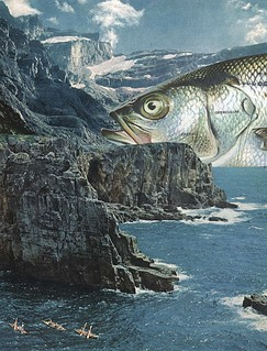 Fish Out Of Water | by collageartbyjesse