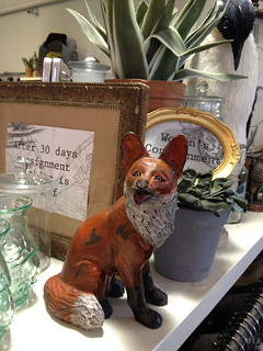 Fox at Front & Co. | by Christine Rondeau