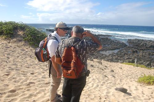 Hawaii State Tours