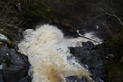 181111-birks-o-aberfeldy-waterfall-2 | by treeblog
