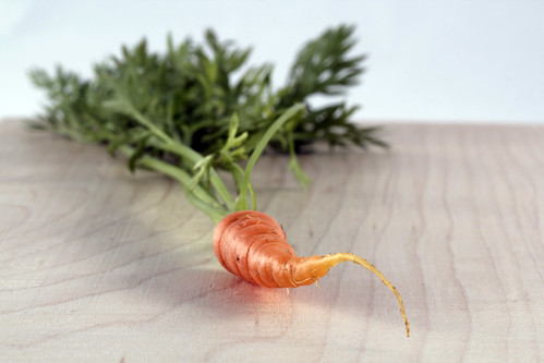 Baby Carrot Home Harvest | by amancalledcraig
