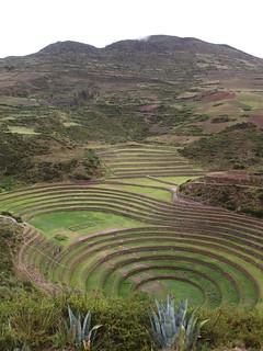 Moray /  Perú Peru