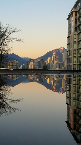 Fairview Reflections | by planted city