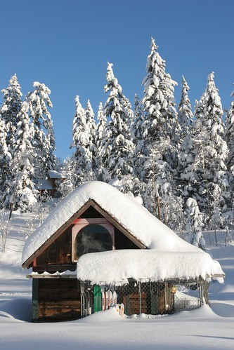 Cabin in the snow durango colorado visit durango flickr for Vacation in the snow