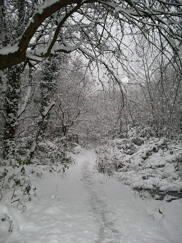 The Triangle in Winter | by LWT Gunnersbury Triangle