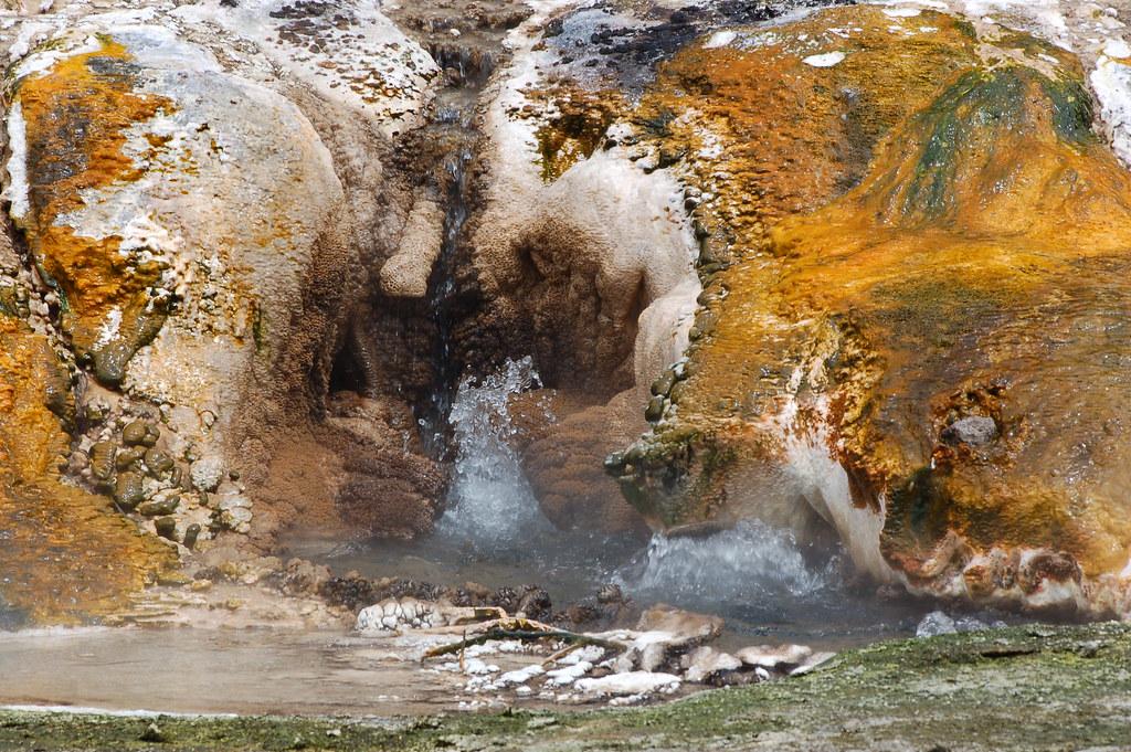 2009 Jan NZ Rotorua Volcanic Valley 149