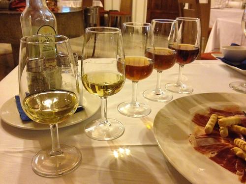 Degustation of Spanish sherry
