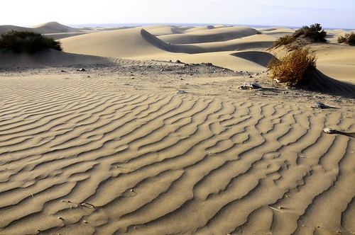 Dunes of Maspalomas - south of Gran Canaria | by Dunas Hotels & Resorts