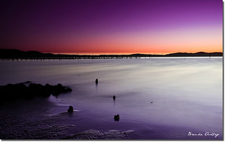 swan bay | by liipgloss