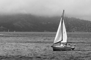 Sailing in SF Bay | by shaire productions