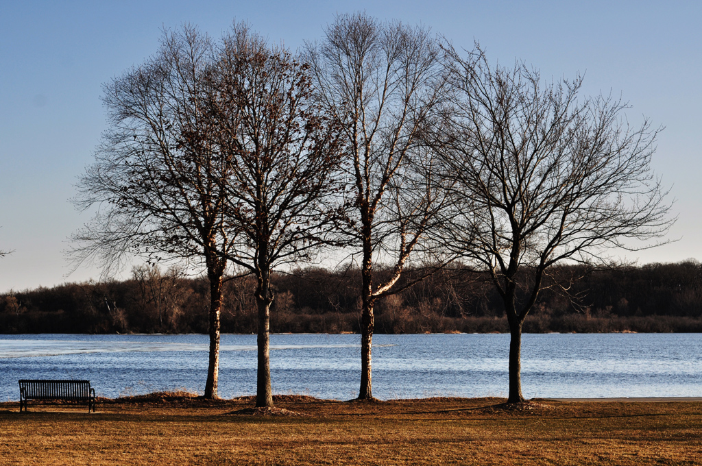 What Difference Four Days Makes >> What A Difference Four Days Makes Lake Wingra Four Days Ag Flickr