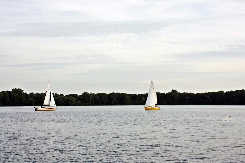 Goldengelchen Sommertag am See08