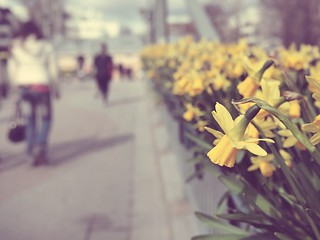 First signs of spring | by heisajo
