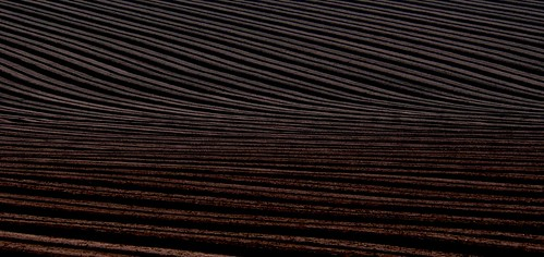 Optical Illusion Ploughed field # dailyshoot | by Leshaines123