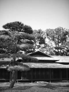 East Gardens of the Imperial Palace | by ryojin_s