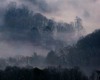 Foggy Mountain Neighbors | by Blue Ridge Pics