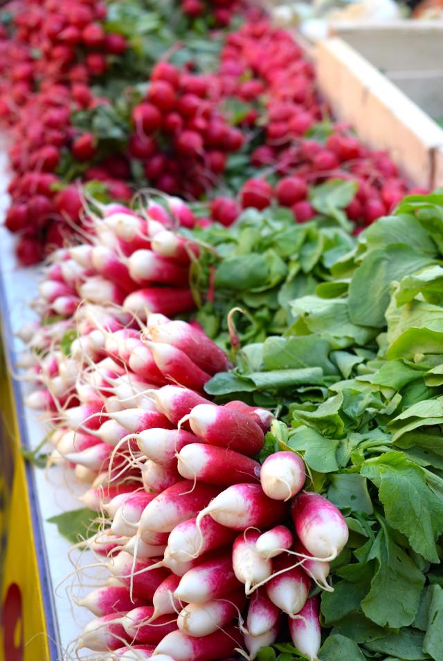 Radishes at Sarlat Market | www.rachelphipps.com @rachelphipps