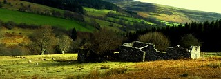 Old cottage black mountains Wales #dailyshoot | by Leshaines123