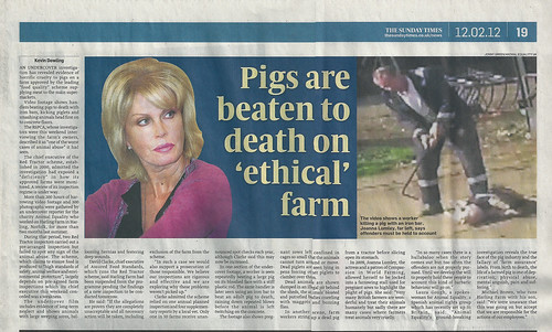 12/02/2012 - Harling farm undercover investigation on The Sunday Times | by Animal Equality International