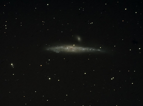 NGC4631, larger | by tallnutt
