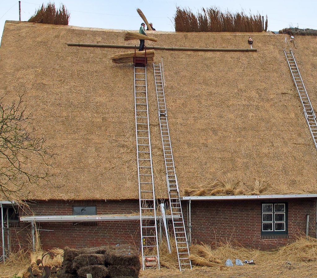 Reetdach Decken 12 03 2012 Das Foto Zeigt Eines Der Altes Flickr