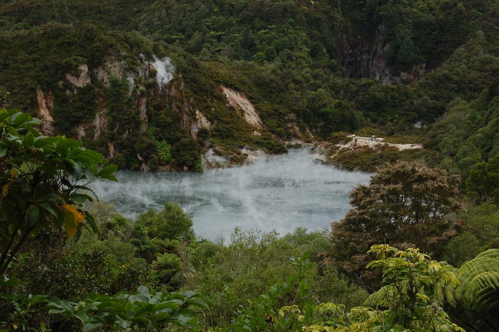 2009 Jan NZ Rotorua Volcanic Valley 016
