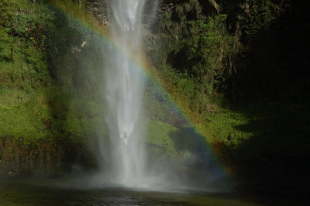 2008 Jan NZ Bridal Veil Falls 020