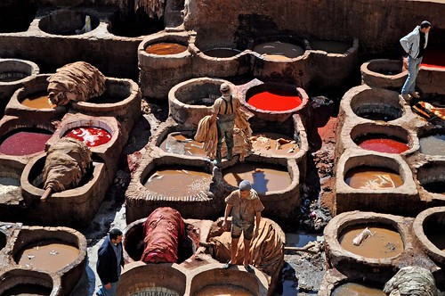how to visit fez tanneries