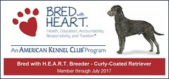 2016_CURL_BWH_banner