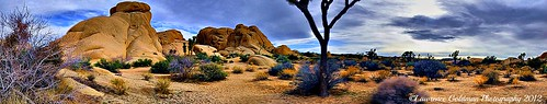 Boulder and Desert Panorama Joshua Tree National Park | by lhg_11, 2million views. Thank you!