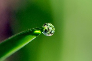 Defying gravity. | by Victoria.....a secas.