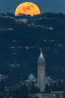 Full Moon over UC Berkeley Sather Tower & I-House - My new favorite | by berkeleyhomes-dot-com