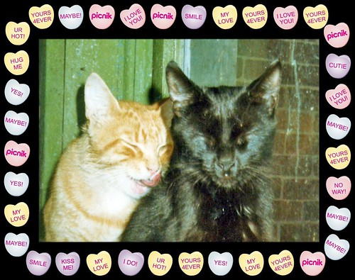 DC And Twinkie Picnik Candy Heart Framed | by Chrisser