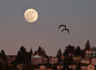 Moon Rise Over Queen Anne | by Ingrid Taylar