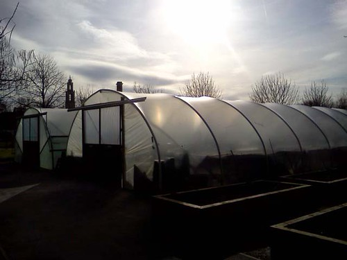 Polytunnels | by Art in the Park pics