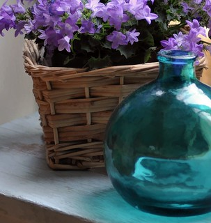 campanula and bottle on chemistry stool | by Jane Brown~
