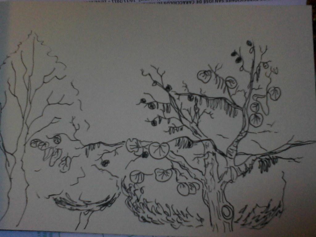 Arbol Del Amor Invierno Dibujo De Un árbol Del Amor 280 Flickr