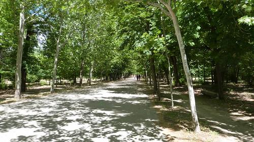 16-Madrid-0104