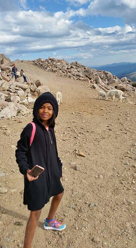 Aja at Mt Evans, CO