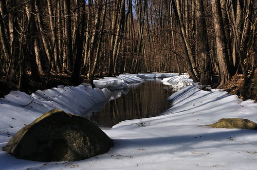 Zemplén Mountains (Hungary) - Frozen brook | by ๑۩๑ V ๑۩๑