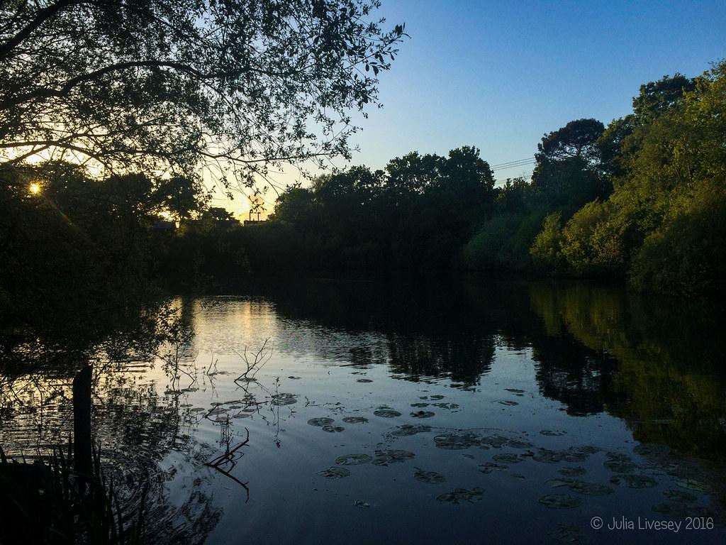 Sunset over Creekmoor Ponds